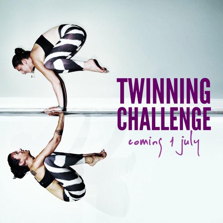 Twinning Challenge 2.0